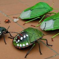 Pis kokulu yeşil böcek